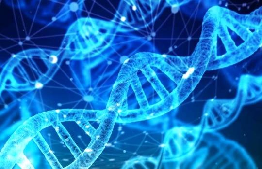 Pengertian Bioteknologi Modern Contoh Produk Dampak Positif Negatif
