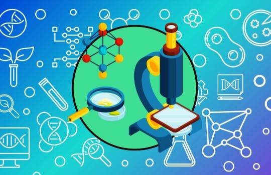 Pengertian Bioteknologi Modern Konvensional Contoh Produk Dampak Positif Negatif